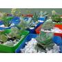 10 Suculentas Y Cactus! Preciosas