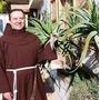Aloe Vera Arborescens Miller Medicinal En Cordoba Capital
