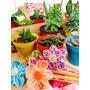 Mini Cactus Y Sucus Por 10 (maceta Nº6)