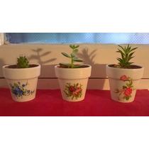 Souvenirs Maceta Numero 8 Con Cactus Y Suculentas Oferta