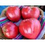 Semillas De Tomate Gigante / Oxheart