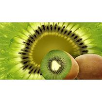 Kiwi, Actinidia Deliciosa - Fruta - Semillas Para Plantas