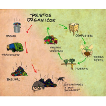Nucleo De 20 Lombrices Rojas Californianas Compost/humus