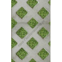 Baldosa Grilla Hormigon Plus Bloque Cesped Pasto Green Block