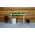 Hidroponia En Casa Kit De Cultivo En Nft. Simple Y Fácil!!!
