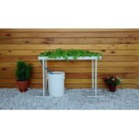 Hidroponia Kit De Cultivo Hidroponico. Simple Y Fácil!!!