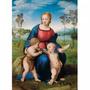 Rompecabezas Clementoni X 1000 - La Virgen Del Jilguero