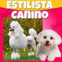 Aprende Estilista Canino Profesional, Estetica Canina Videos