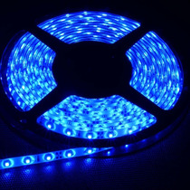 Tira De Leds Azul Exterior 5050 5 Metros Siliconada Led 24v