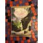 Libro El Señor De Los Anillos La Comunidad - Tolkien