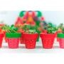 Souvenir - Macetas Pintadas Y Decoradas Con Cactus Incluido!