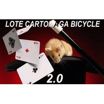 Lote Cartomagia Bicycle Profesional 2.0 - El Mejor!