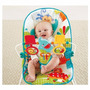 Mecedora Fisher-price Animal Party Bouncer