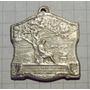 Medalla San Lorenzo Batalla De San Martin 1913 11,5gms 25x25
