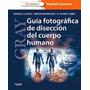 Fotografia Disección Cuerpo Humano. Gray. Libro Digital
