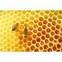 Miel Pura De Abeja 100% Natural (sin Agregados)