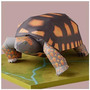Tortuga Terrestre Animal Imprimible Papelcraft Envio Gratis