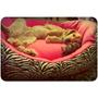 Cama Mascotas Gatos Perros En Polar Y Loneta 70 X 50 Cm