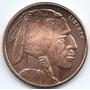 Moneda Onza Ee Uu 2013 Cobre Sin Circular