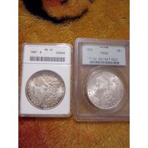 7 Dolar Morgan