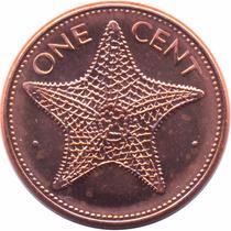 Bahamas 1 Cent 1998 Unc Estrellas De Mar De Rollo Km 59a