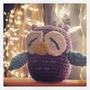 Mini Buho A Crochet - Elida A Tejer