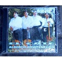 El Caté Alberto Montenegro - 25 Años Con El Chamamé (cerrado