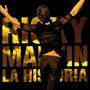 Cd Ricky Martin La Historia
