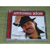 Antonio Rios Homenaje A Los Grandes Del Chamame Cd Sellado