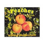 The Presidents Of The United States Peaches (import Austria)