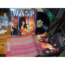 Wasp Inside Electric Circus