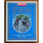 La Llamada De La Selva - Jack London - Biblioteca Anteojito