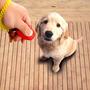 Clicker Con Pulsera Para Entrenamiento Adiestramiento Mascot