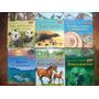 Souvenirs Ideal Para Niños Y Adolescentes Libros Genios X12