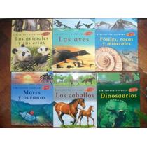 Souvenirs Ideal Regalo Fin De Año Libros Genios X12