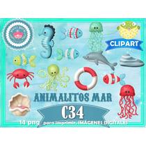 Set 14 Diseños Png Animales Fondo Mar 1er Cumple Niño Scrap