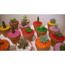 Souvenirs Plantitas Cactus Y Suculentas Regalos Eventos