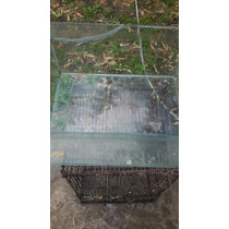 Pecera 540 X 250 Ideal Tortugas Hamster Peces