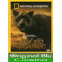 Lobo Gigante - National Geographic - Dvd Original - Almagro