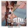 Selena En Adopción