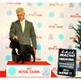 Campeon Argentino En Servicio De Stud Bulldog Frances