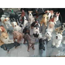 Collecion Perros 34 Razas Ideal Veterinaria