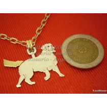 Golden Retriever - Dije Plata 925 - Oro 18k
