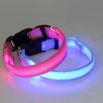 Collar Led Para Perros, Luz Fija E Intermitente. Original!