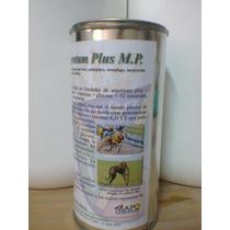 Alimento Mineral Para Perros Galgo, Terapeutico