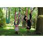 Columpio Hamaca Yoga Aéreo- Pilates- Fly Swing
