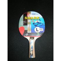 Paleta Ping Pong Giant Dragon 2 Estrellas