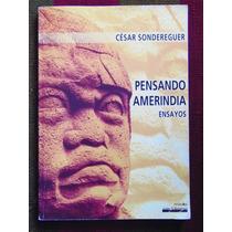 Pensando Amerindia Ensayos César Sondereguer Nobuko