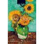 Van Gogh: Vida Y Obra