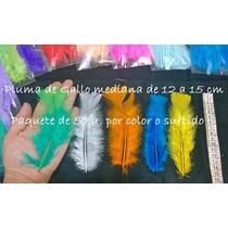 Plumas De Gallo Mediana X 50 U. Color O Surtida